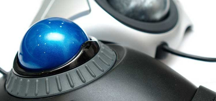The 6 Best Trackball Mice & What To Look For Before You Buy
