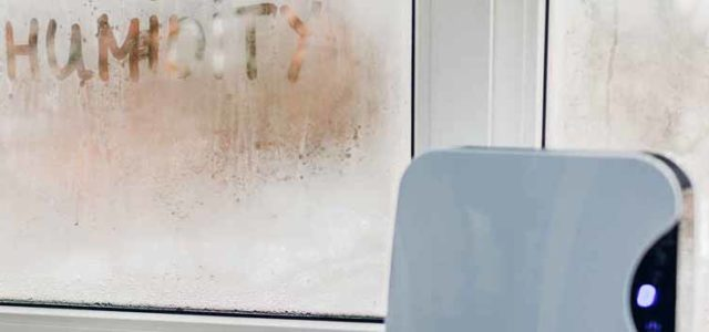 How To Dehumidify a Room – The Key Steps You Should Take
